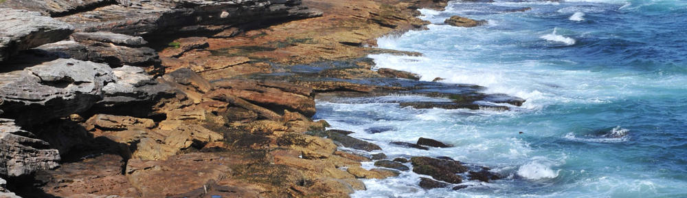 Coastal Living Realty & Associates LLC